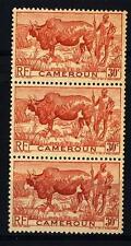 CAMEROUN - CAMERUN - 1946 - Zebù con pastore