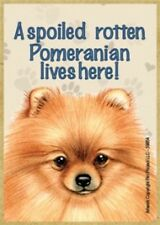 """Magnet-A Spoiled Pomeranian Lives Here Wood Magnet-3.5"""" X 2.5"""""""