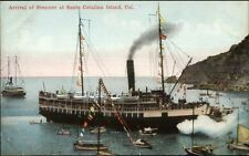 Catalina Island CA Arrival of Steamer Ship c1910 Postcard
