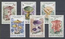 CHAMPIGNON Roumanie 6 val de 1986 ** MUSHROOM PILZ FUNGO