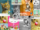 MAGAZINE PRINT ADS featuring CATS! Various colors - YOUR CHOICE!