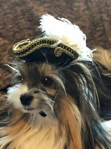 Halloween Pirate Colonial Victorian Renaissance Dog Cat Hat XS-S New Gold/White