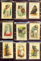 """1910 Old Mill Cigarette Tobacco Silk S4 BREEDS OF DOGS SET (25) 2""""x3"""" Beautiful!"""