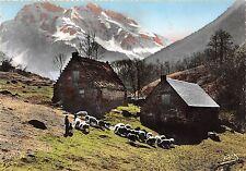 BR26409 Les pyrenees paturages et cabanes de Bergers Bizourteres sheep mouton