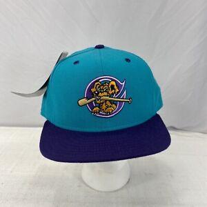 Vintage New Era Charleston RiverDogs MILB 5950 100% Wool USA Fitted Hat SZ 7 3/8