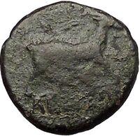 AIGAI in AEOLIS 2-1stCenBC Apollo Goat Authentic Ancient Greek Coin i52576