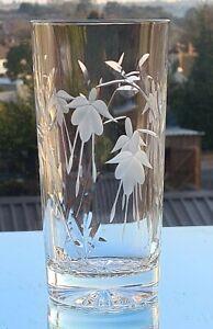 Cascade Design Crystal 14 oz HiBall /Gin & Tonic/ Water Glass. NEW  Stuart