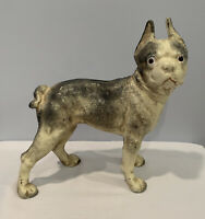 """Antique Cast Iron Bull Dog Coin Bank 8-1/2 Pounds 10"""" Tall All Original LOOK!"""