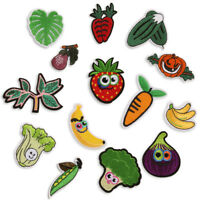 14PCS/Set Embroidered Fruit Iron On Sew On Patches Badge Fabric Applique CraftEP
