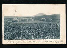 South Africa Native Kraal and Amajuba Hill u/b PPC Belfast TVL 1905 postmark