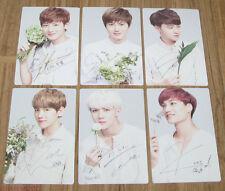 EXO NATURE REPUBLIC EXO-K EXO-M 12P LIP BALM PHOTOCARD PHOTO CARD SET NEW