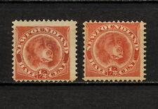 (NNAV 194) NEWFOUNDLAND 1887 1896 MH MNG MICH 35 TYPE Dog