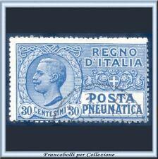 1923 Italia Regno Posta Pneumatica cent. 30 azzurro n. 3 Usato