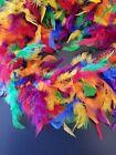 Rainbow Pride Party Mardi Gras 40 gm 5 ft Chandelle Feather Boa
