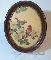"Vtg House Finches & Garden Roses No. 206 James Gordon Irving Oval Art 11-1/2"""