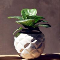 Concrete 3D Pineapple Vase Mould Creative Desktop Decoration Cement Pot Mold