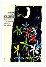 Spanish decor Graphic Design movie Poster 4 film Midnight Summer DREAMS.Art.