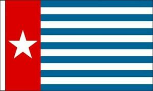 Pack Of 6 West Papua Sleeved Flag suitable for Boats 45cm x 30cm