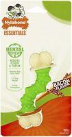 Nylabone Daily Dental Dog Chew, Curved Design, Bacon Flavor (SMALL)