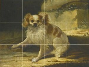 A PORTRAIT OF A BROWN AND WHITE TOY SPANIEL Tile Mural Kitchen Backsplash 24x18