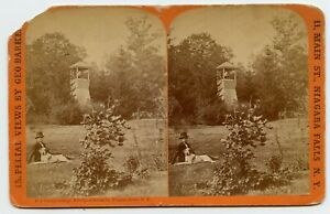 De Veaux College Niagara River N.Y., Dog Vintage Stereoview Photo by Barker