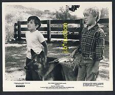 Walt Disney Film SMITH Boys w German Shepherd / Jungs m Schäferhund * Photo 1968