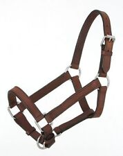 Royal King brown leather Mini pony halter size small horse tack equine 44-700