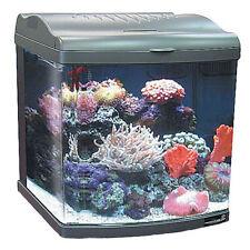 Reef Tank