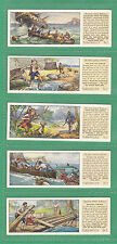 TYPHOO  TEA -  SCARCE SET OF T 25 ' THE SWISS FAMILY ROBINSON '  CARDS  -  1935