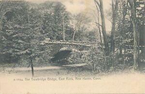 NEW HAVEN CT - East Rock The Trowbridge Bridge Rotograph Postcard-udb (pre 1908)