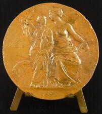"""Médaille Jules Méline 'industrie cotonnière filateurs vogiens 1892 """"Tarif"""" Medal"""