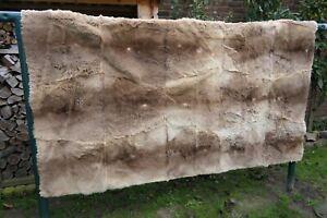 graues Riesen Känguru Fell Pelz Decke riesige XXL Tagesdecke 240 x 220 cm UNIKAT