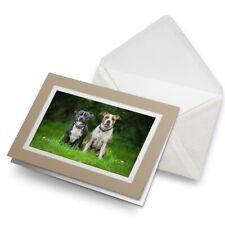 Tarjeta De Saludos (Biege) - Inglés Americano Staffordshire Perros #12372