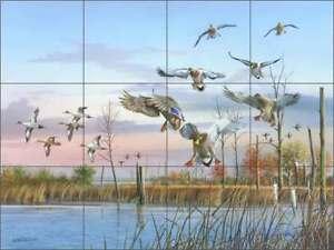 Duck Tile Backsplash Mike Brown Wildlife Art Ceramic Mural MBA001