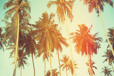 SUPERB VINTAGE STYLE PALM TREES CANVAS #199 QUALITY CANVAS PICTURE WALL ART A1