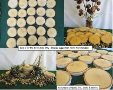 "25 pcs 2""-3""x.5"" White Birch Wood Tree Log Slice Round Disk Wedding Crafts Decor"