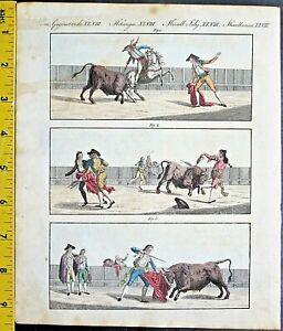 Corrida/Bullfight in Spain,France,Bertuch,Bilderbuch,handc.Engrav.ca.1800