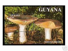 0233++GUYANA  BLOC  N°2  CHAMPIGNONS  1996