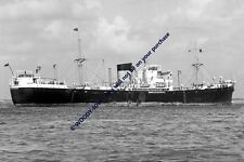mc1565 - Bank Line Cargo Ship - Cedarbank , built 1955 - photo 6x4
