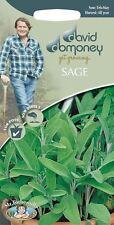 Mr Fothergills - Herb - David Domoney Sage - 75 Seeds