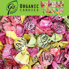 Go Organic VEGAN ORGANIC HARD Candy Strawberry Mango Watermelon 3.5 oz Bag NEW