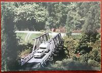 Waipoua Kauri Forest, Northland, New Zealand. Post Card