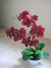 Orchidee  Kunstpflanze 60 cm rot bordeaux 2 Rispen 1017101-01 getopft F73