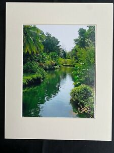 11 X 14 Matted  Photo  - signed by photographer Marie Whitton- WATER GARDEN