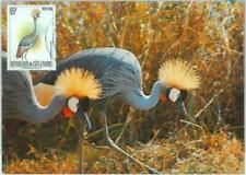 87607 - IVORY COAST - Postal History - MAXIMUM CARD -  BIRDS  1989