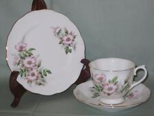 Royal Albert Friendship Wild Rose Bone China Trio Tea Cup Saucer & Side Plate