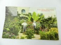 Postcard Long Beach California Couple in Hotel Virginia Tropical Gardens 1923