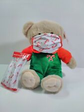 Inter-American Products Holiday Home Plush Teddy Bear & Face Covering Christmas