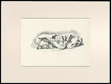SEALYHAM TERRIER MUM AND PUPS CUTE LUCY DAWSON DOG SKETCH PRINT MOUNTED