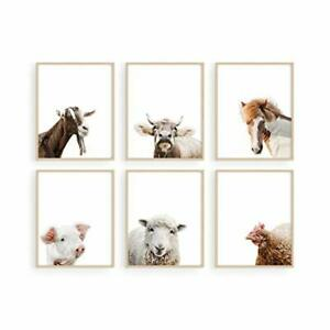 Haus and Hues Rustic Farm Animal Pictures Set of 6 - Farmhouse Wall Art and Coun
